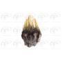 Set peres Coq de leon Dewaux - Dark